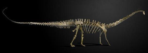 Dinossauro é vendido por 1,5 milhão de reais